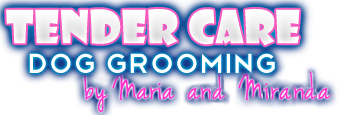 Best Fort Myers Dog Groomer |